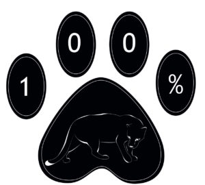 Orange Grove Logo with panther and 100% participation for 100% of the students.